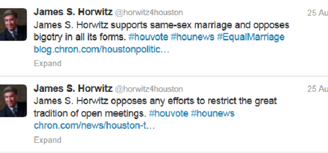 James S. Horwitz Challenges Christie for At Large 5