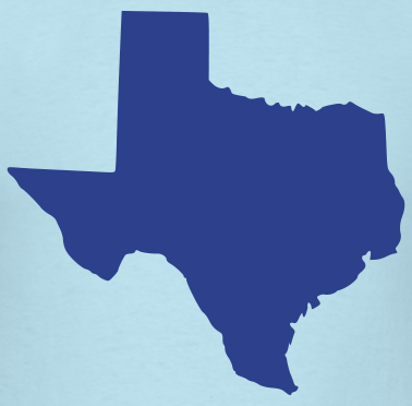 TexWatch 2014:  Past the Primaries Part 1