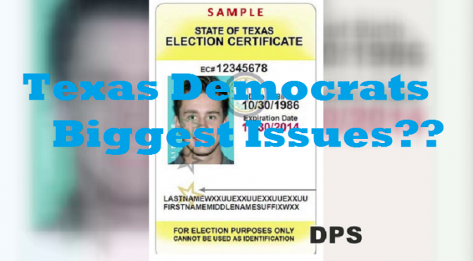 Dear Texas Democrats:  Don't Blame All of 2014 On Voter ID