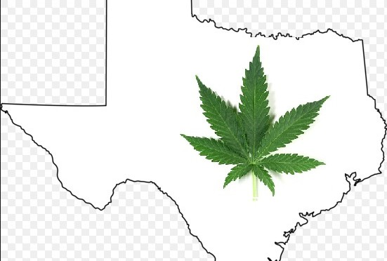 Could Legal Marijuana Soon Come to Texas?
